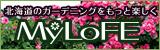 北海道花本MyLoFE(まいろふぇ)