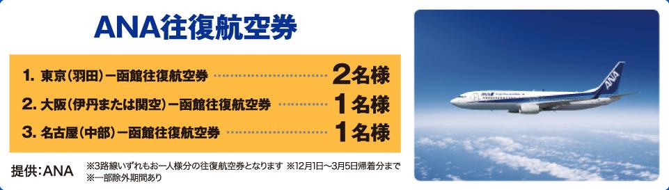 ANA 函館ー東京(羽田)ペア往復航空券