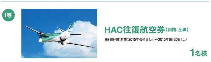1等/HAC往復航空券(釧路-丘珠) 1名様