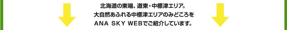 北海道の東端、道東・中標津エリア。大自然あふれる中標津エリアのみどころをANA SKY WEBでご紹介しています。