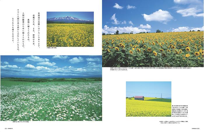 特集2北海道 花めぐり